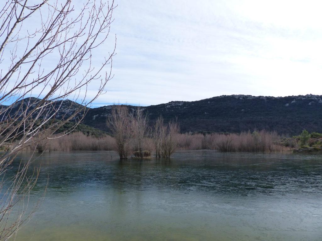 Une après-midi au Lac de la Jasse