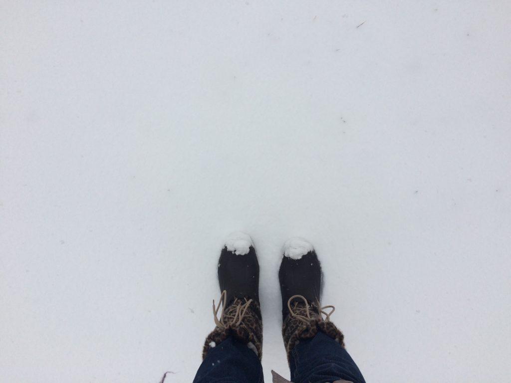 La neige s'invite dans le sud