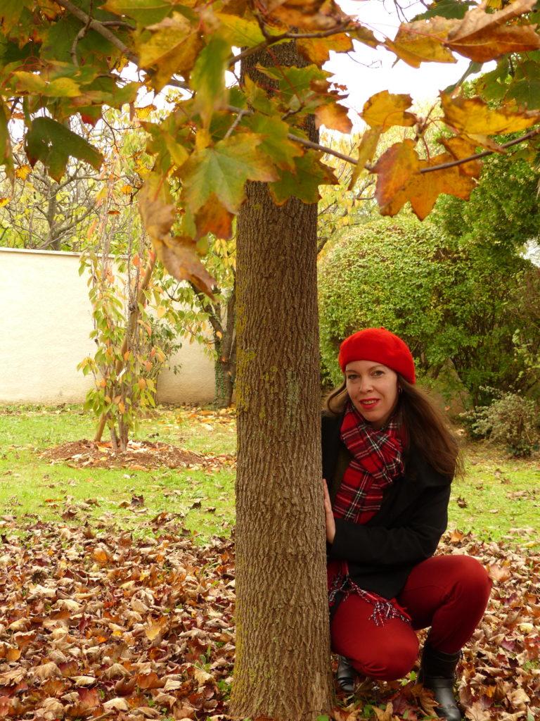 Couleurs d'automne