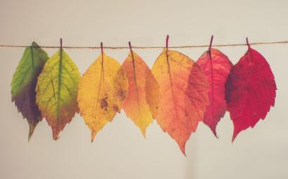 5 choses que j'aime faire en automne