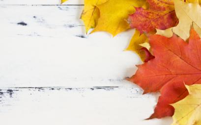 Idées d'articles à écrire en automne
